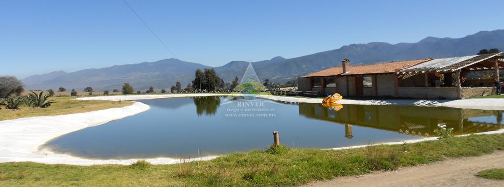Ollas de captaci n de agua for Filtros para lagos artificiales